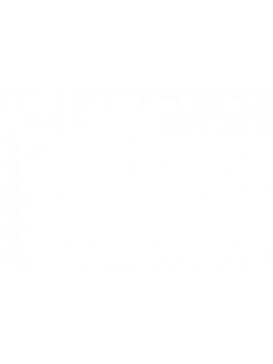 Balmain  Basket Basse Perforee