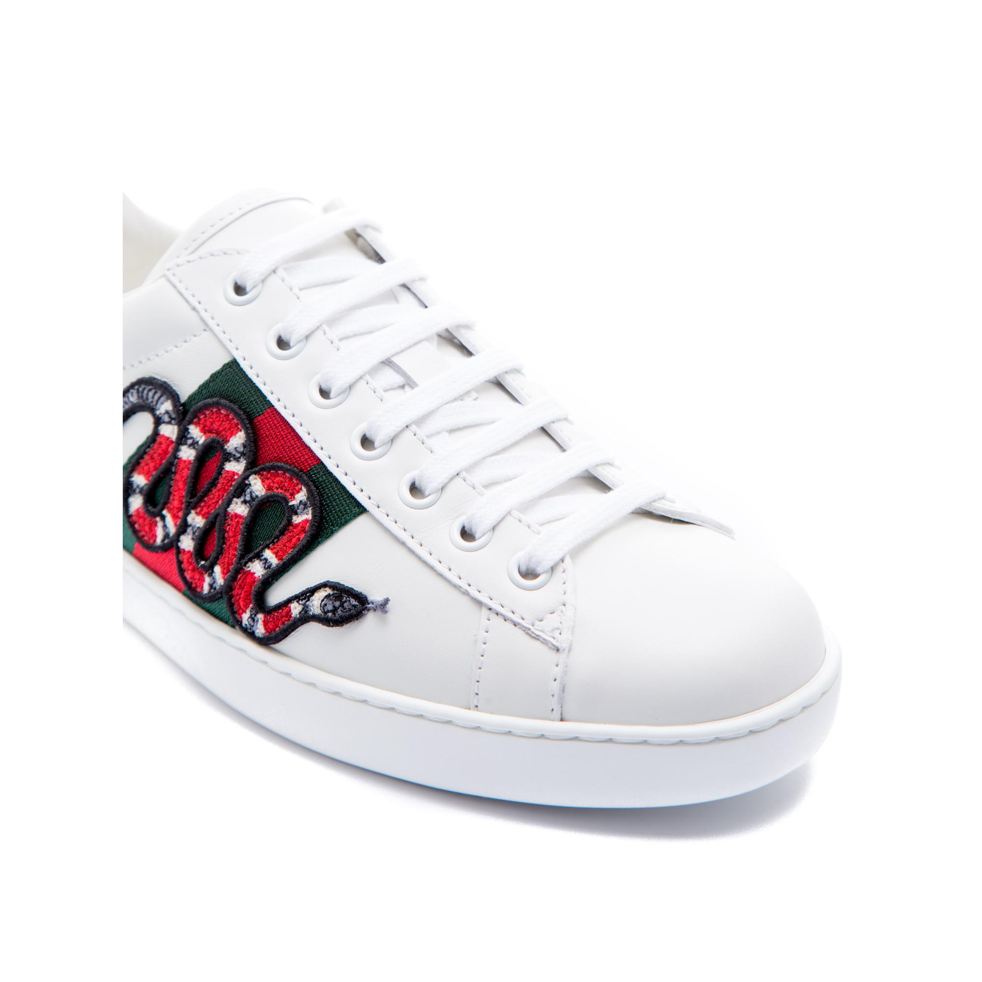 3c11a3f9bc9d ... Gucci sport shoes Gucci sport shoes - www.derodeloper.com - Derodeloper .com