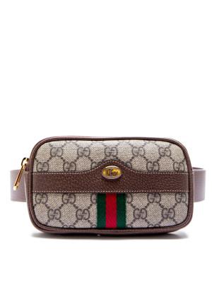 Gucci Gucci belt iphonecase ophidia
