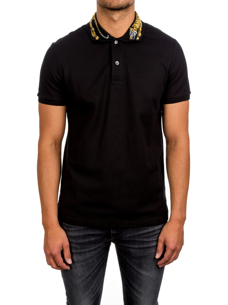 Gucci Polo Related Keywords   Suggestions - Gucci Polo Long Tail ... 0d58c7480b1