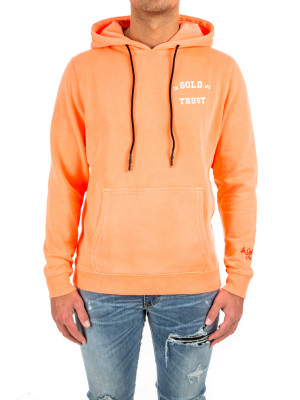 IN GOLD WE TRUST  hoodie basic 428-00394