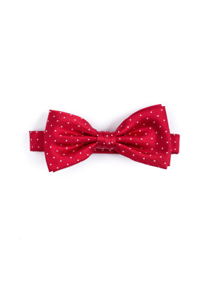 Credo Collection bowtie silk